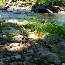 cropped-29_05_t-kopie.jpg